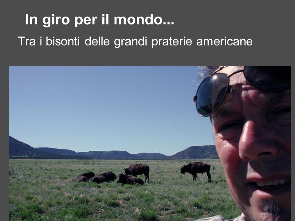 In giro per il mondo... Tra i bisonti delle grandi praterie americane
