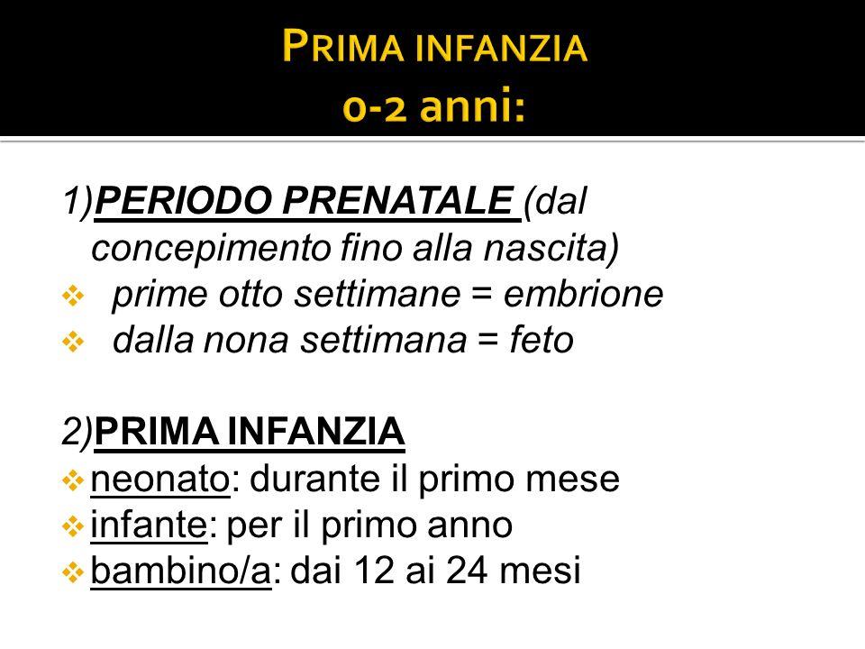 Prima infanzia 0-2 anni: 1)PERIODO PRENATALE (dal concepimento fino alla nascita) prime otto settimane = embrione.