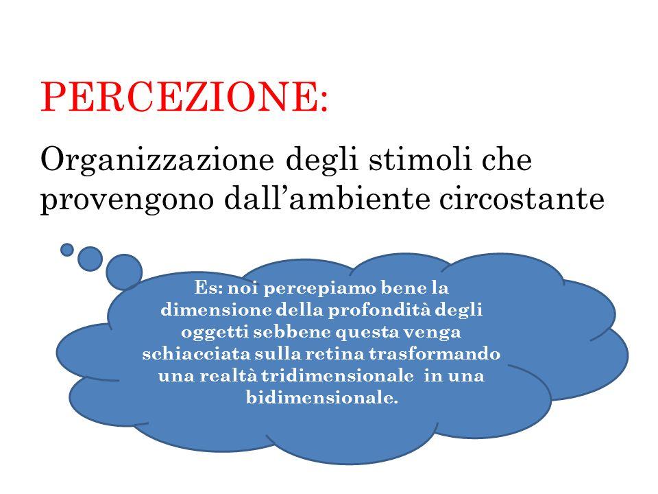PERCEZIONE: Organizzazione degli stimoli che provengono dall'ambiente circostante