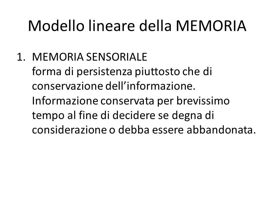 Modello lineare della MEMORIA