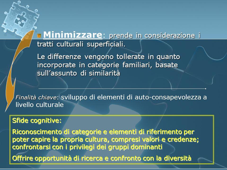 Minimizzare: prende in considerazione i tratti culturali superficiali.
