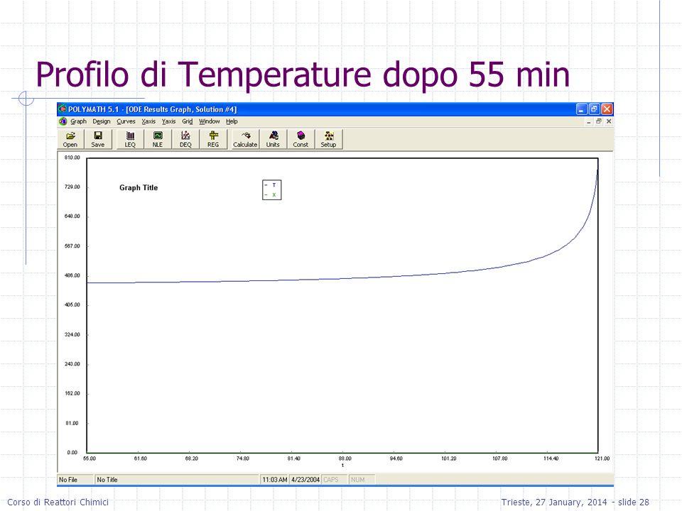 Profilo di Temperature dopo 55 min