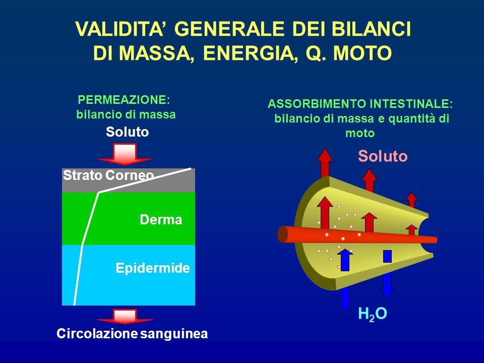 VALIDITA' GENERALE DEI BILANCI