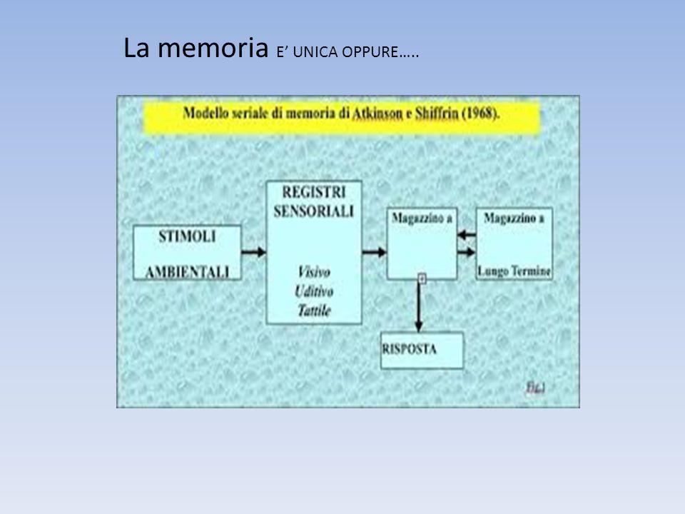 La memoria E' UNICA OPPURE…..