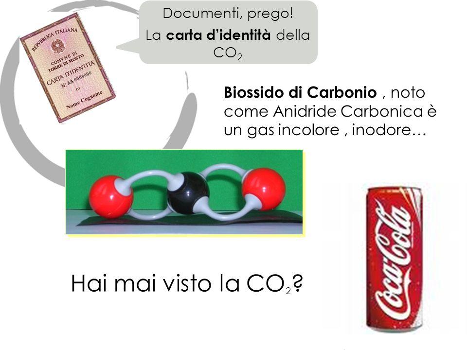 La carta d'identità della CO2