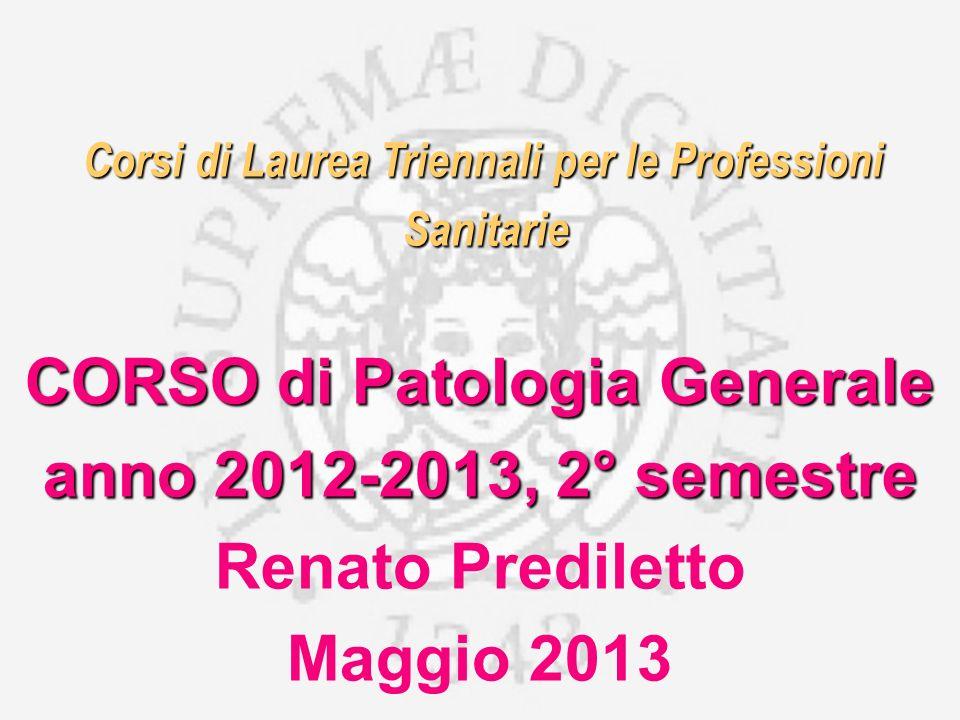 anno 2012-2013, 2° semestre Renato Prediletto Maggio 2013