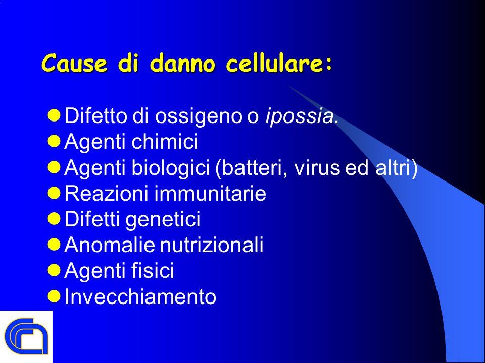 Cause di danno cellulare: