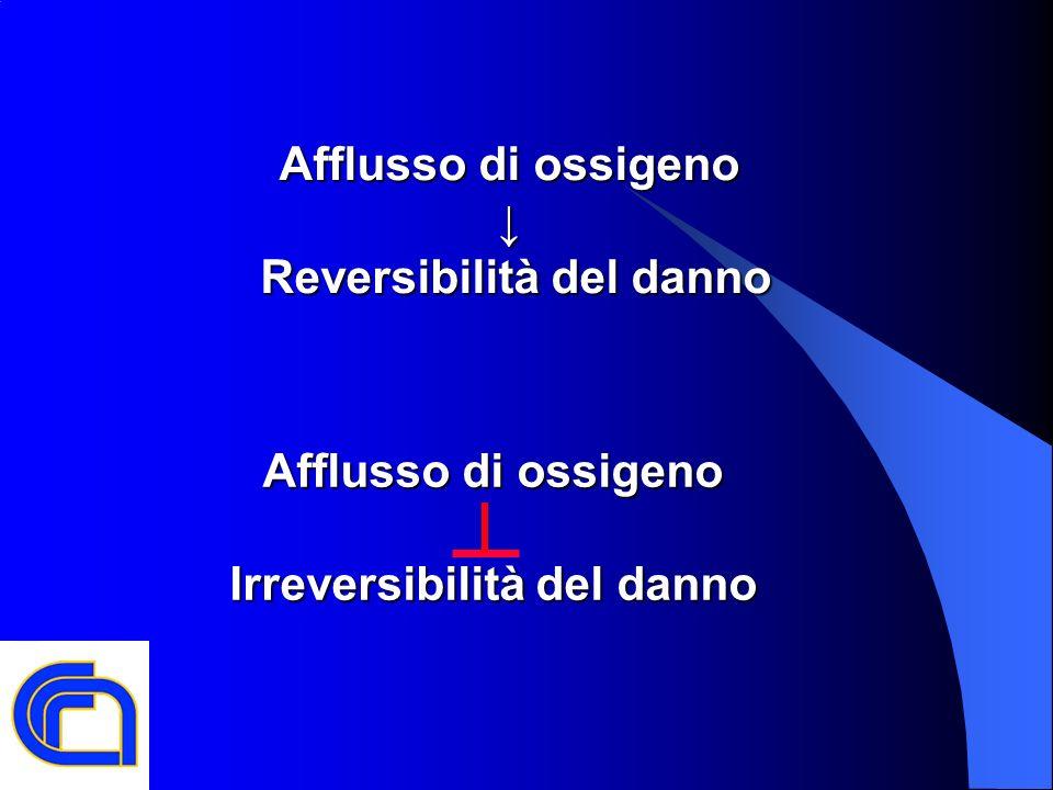 Reversibilità del danno Irreversibilità del danno