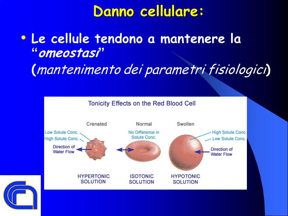 Danno cellulare: Le cellule tendono a mantenere la omeostasi