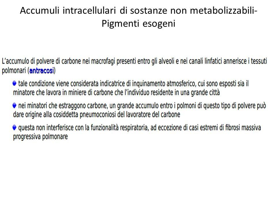 Accumuli intracellulari di sostanze non metabolizzabili-Pigmenti esogeni