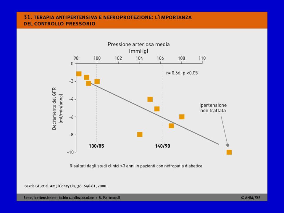 Questa metanalisi degli studi clinici con durata superiore a 3 anni condotti su pazienti con nefropatie croniche proteinuriche e diabete mostra l'impatto determinante dei valori di pression arteriosa sulla progressione delle nefropatie. In assenza di trattamento antiipertensivo la perdita del filtrato glomerulare si aggira sui 10 ml/min/anno, mentre indipendentemente dal tipo di farmaco antipertensivo impiegato, la correzione aggressiva dei valori pressori comporta un significativo rallentamento della progressione di malattia