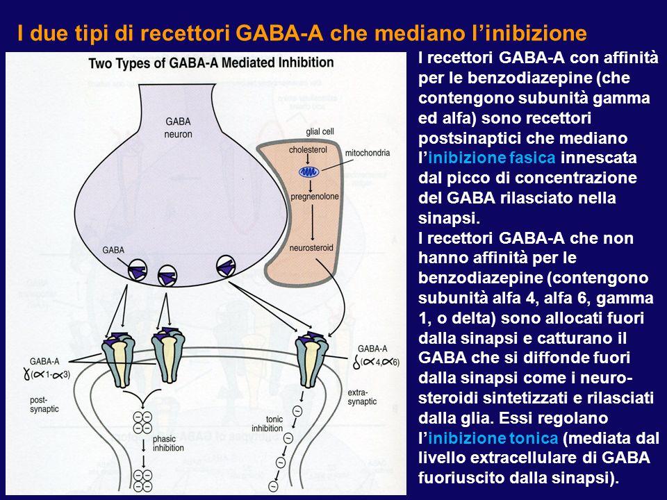 Struttura dei recettori GABA-A