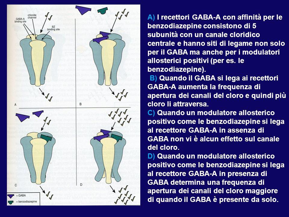 I due tipi di recettori GABA-A che mediano l'inibizione