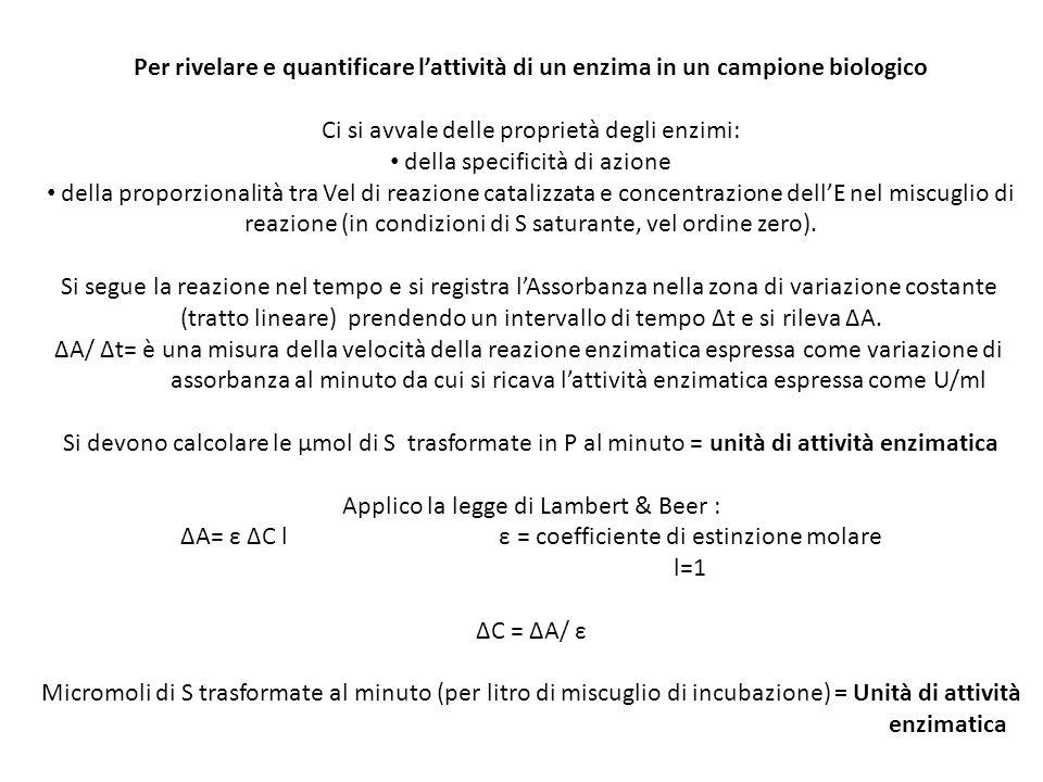 Ci si avvale delle proprietà degli enzimi: della specificità di azione