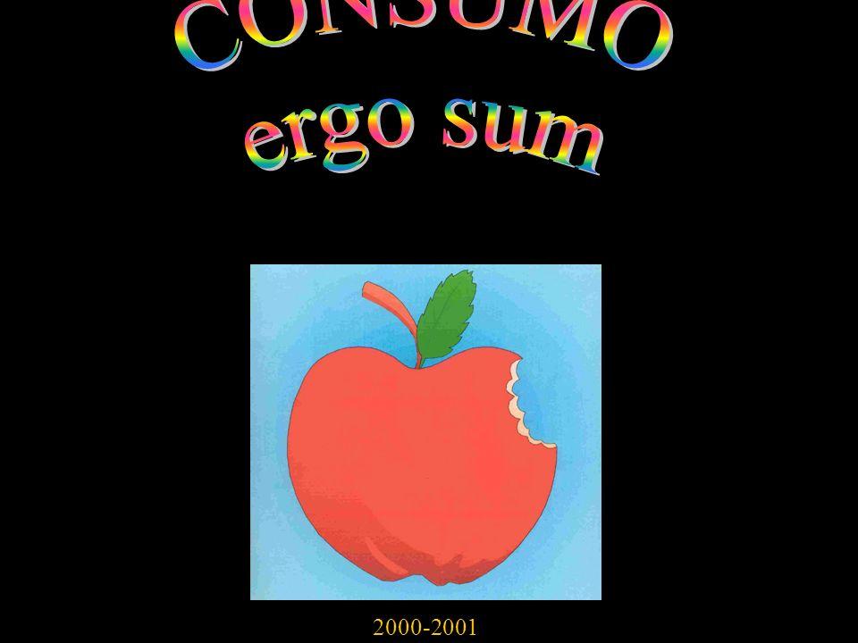 CONSUMO ergo sum 2000-2001