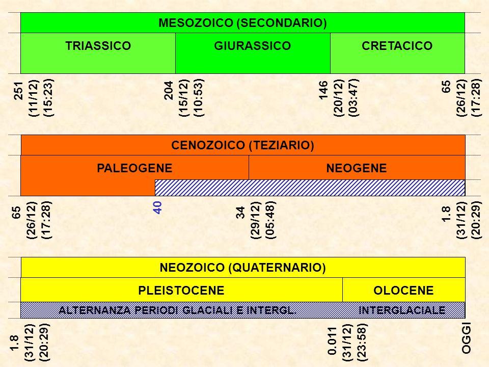 MESOZOICO (SECONDARIO) NEOZOICO (QUATERNARIO)
