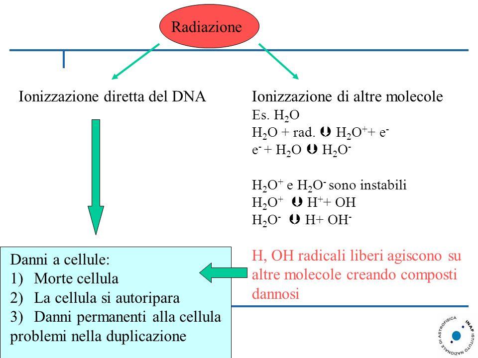Ionizzazione diretta del DNA