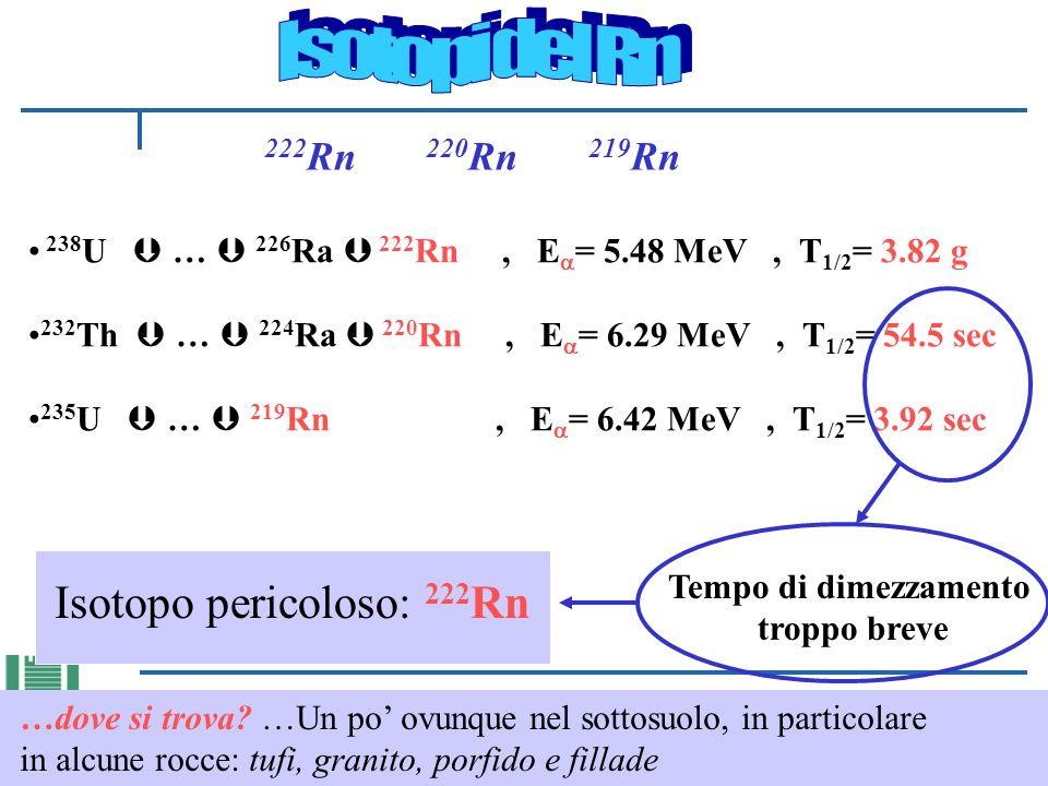 Isotopi del Rn Isotopo pericoloso: 222Rn 222Rn 220Rn 219Rn