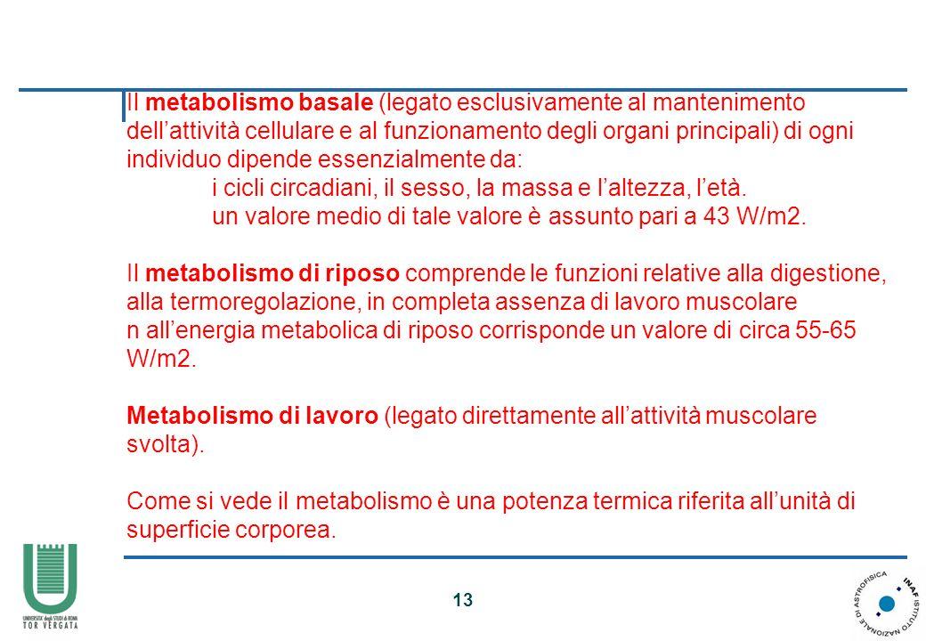 Il metabolismo basale (legato esclusivamente al mantenimento