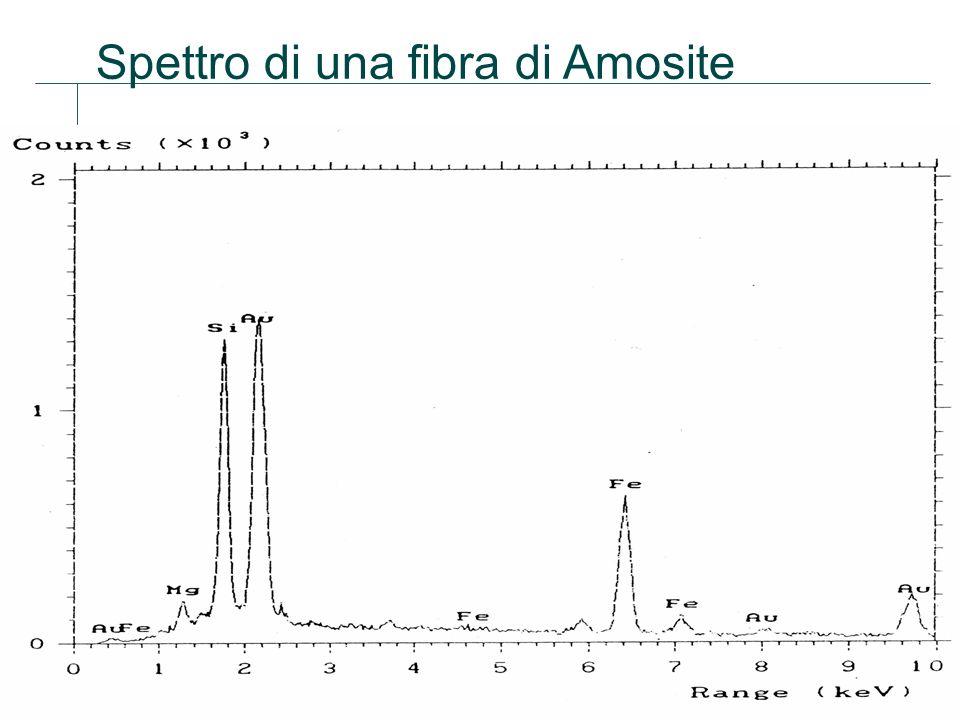 Spettro di una fibra di Amosite