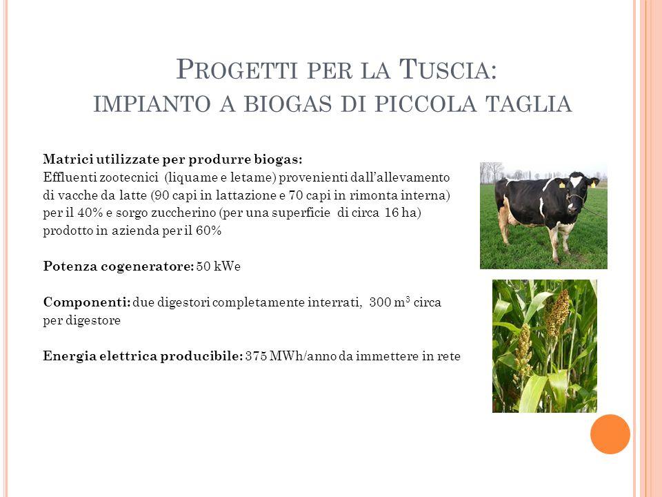 Progetti per la Tuscia: impianto a biogas di piccola taglia
