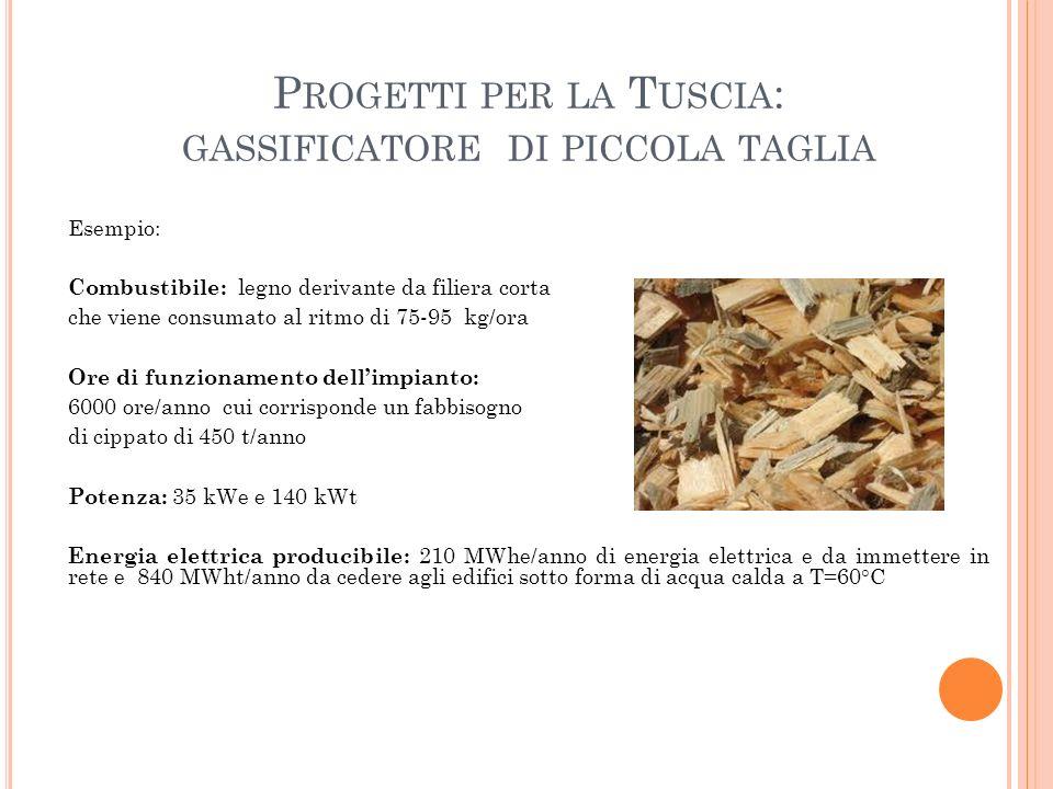 Progetti per la Tuscia: gassificatore di piccola taglia