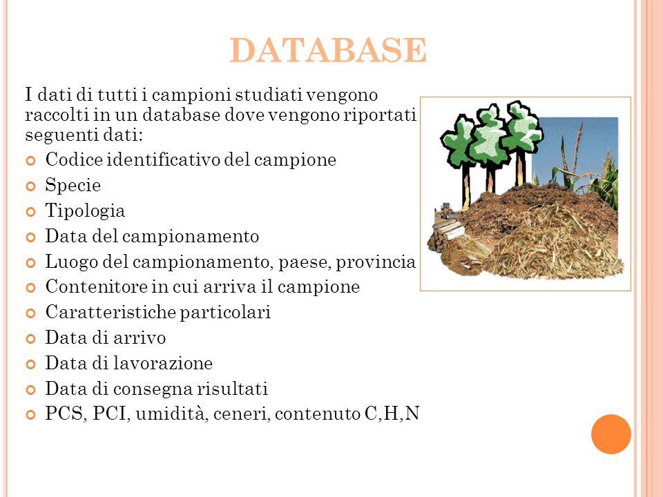 DATABASE I dati di tutti i campioni studiati vengono raccolti in un database dove vengono riportati i seguenti dati: