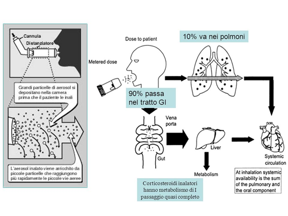 10% va nei polmoni 90% passa nel tratto GI