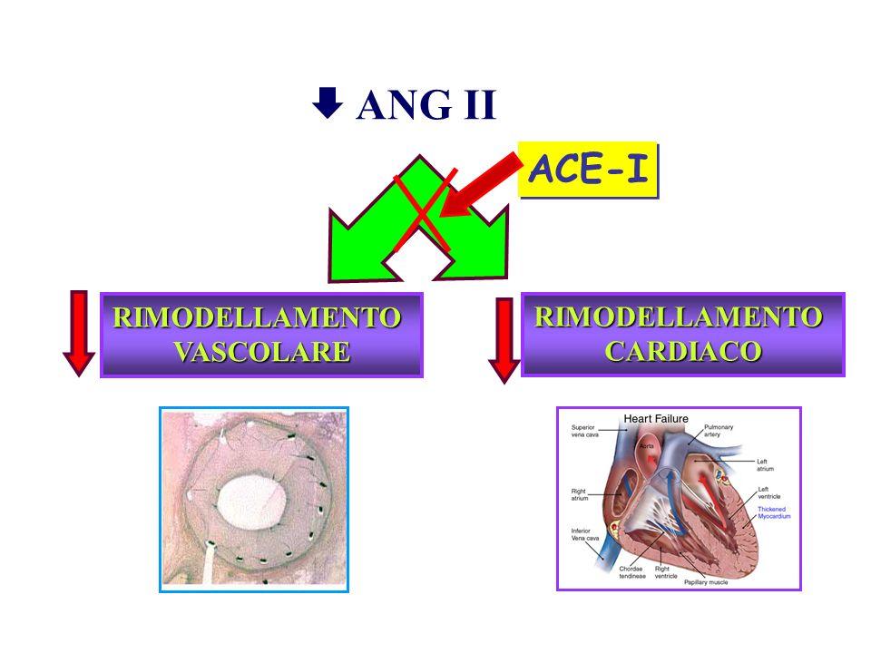  ANG II ACE-I RIMODELLAMENTO VASCOLARE RIMODELLAMENTO CARDIACO