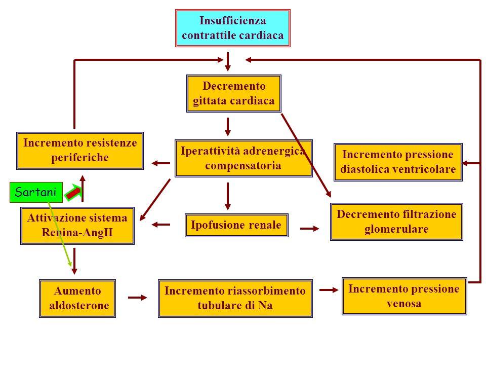 Incremento resistenze periferiche Iperattività adrenergica