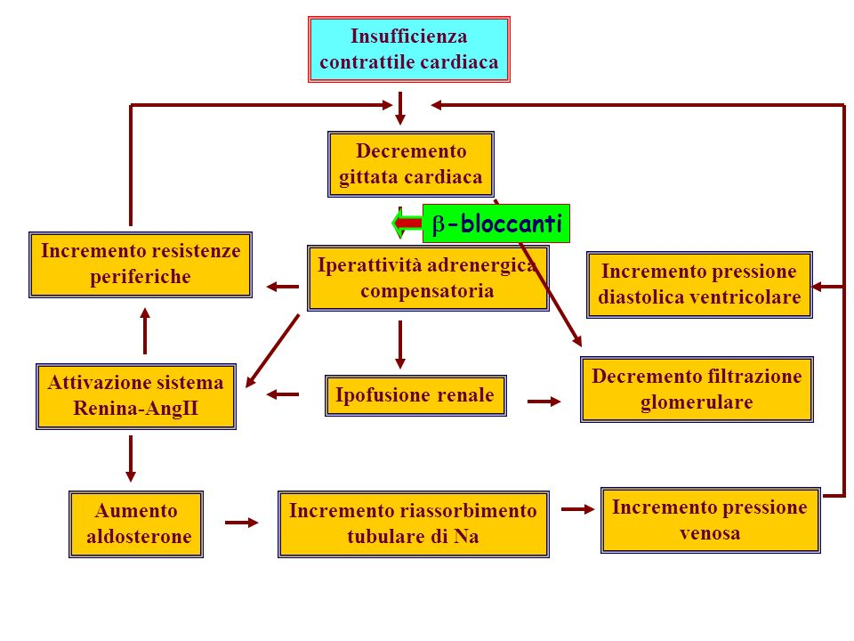 b-bloccanti Insufficienza contrattile cardiaca Decremento