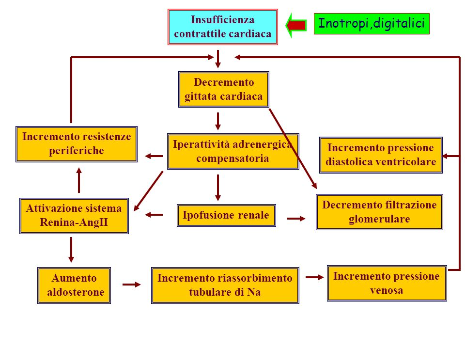 Inotropi,digitalici Insufficienza contrattile cardiaca Decremento