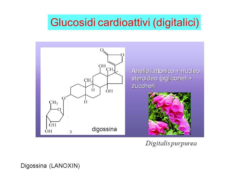 Glucosidi cardioattivi (digitalici)