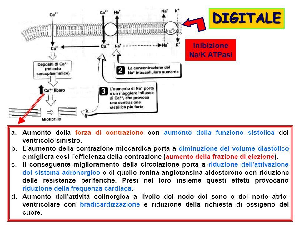 DIGITALE Inibizione Na/K ATPasi
