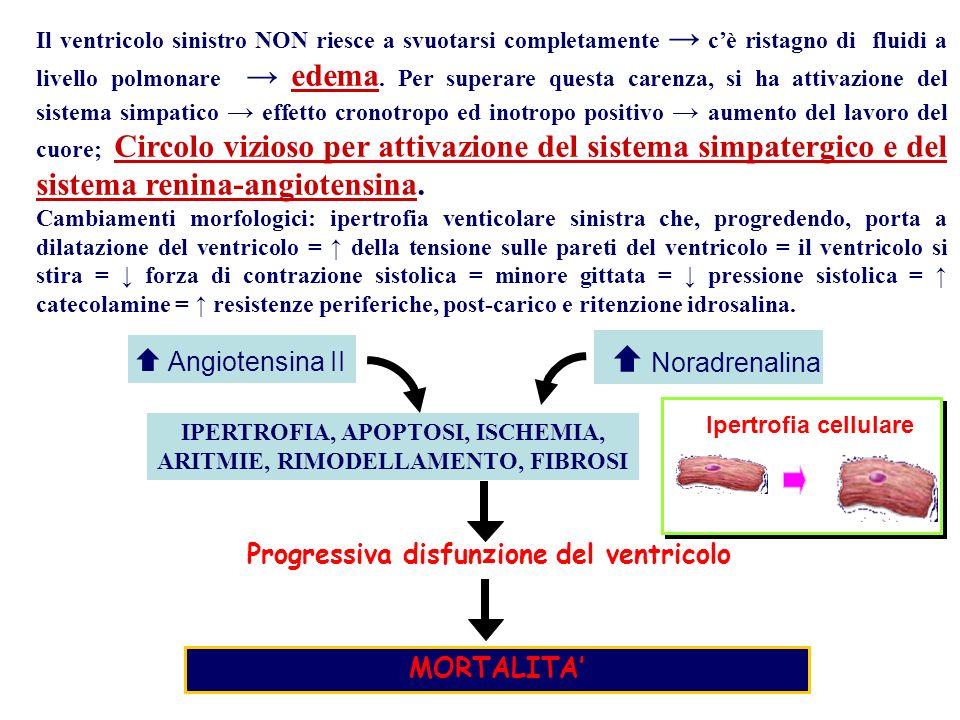  Angiotensina II Progressiva disfunzione del ventricolo MORTALITA'
