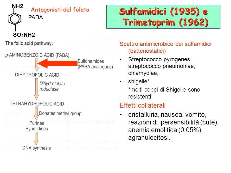 Sulfamidici (1935) e Trimetoprim (1962)