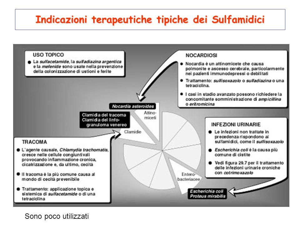 Indicazioni terapeutiche tipiche dei Sulfamidici