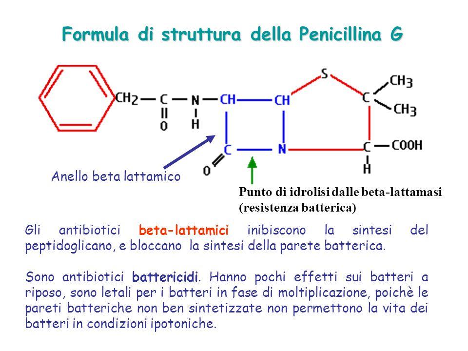 Formula di struttura della Penicillina G