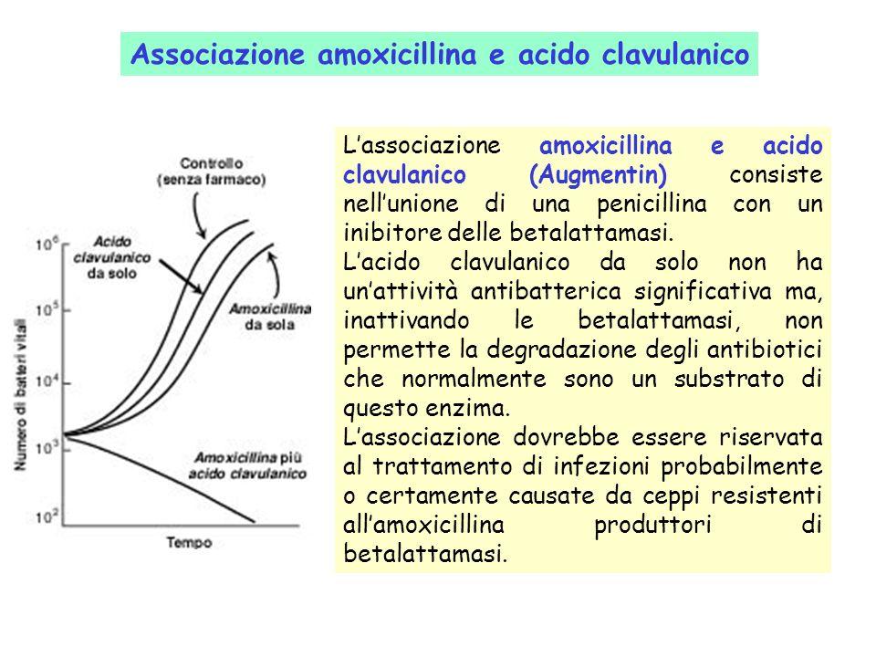 Associazione amoxicillina e acido clavulanico