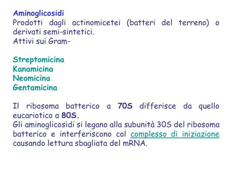 Aminoglicosidi Prodotti dagli actinomicetei (batteri del terreno) o derivati semi-sintetici. Attivi sui Gram-