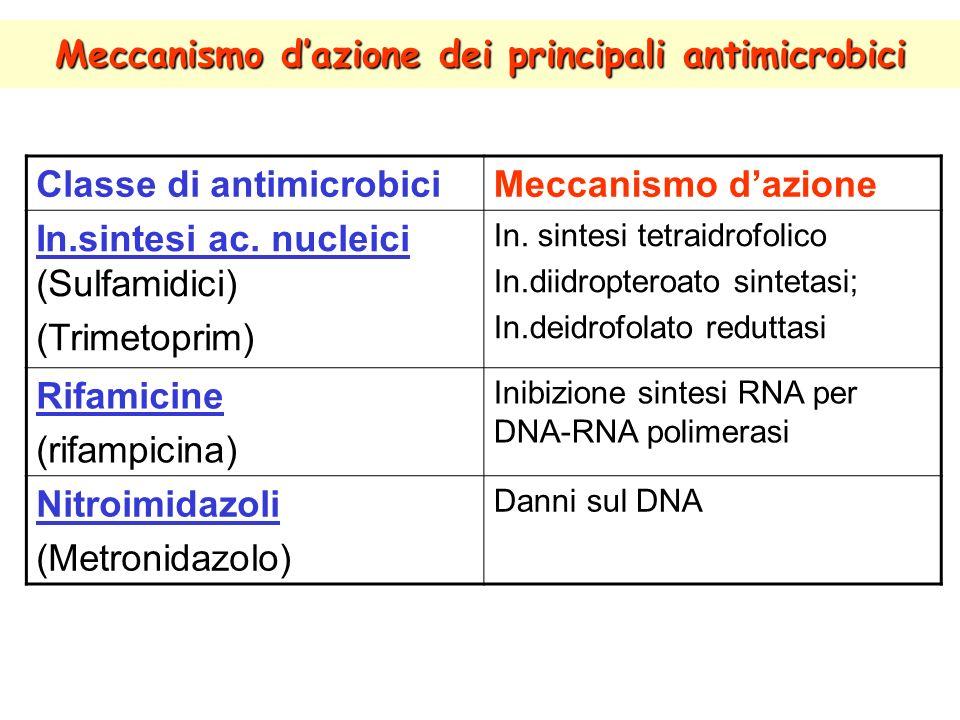 Meccanismo d'azione dei principali antimicrobici