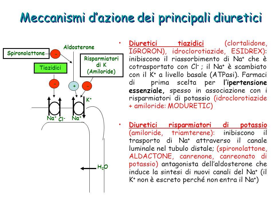 Meccanismi d'azione dei principali diuretici