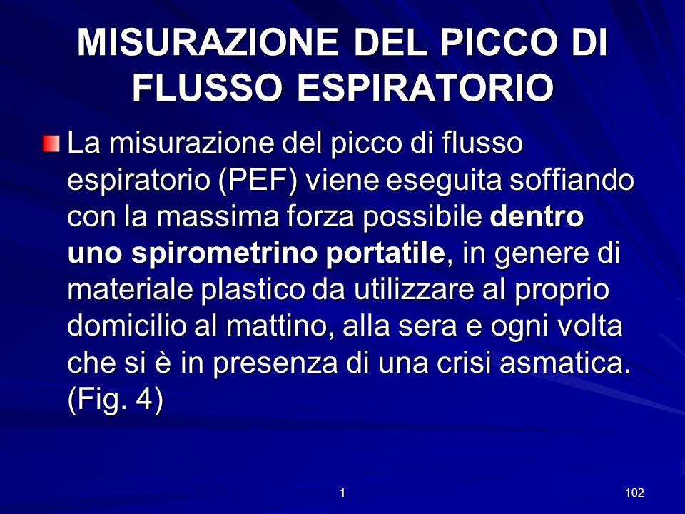 MISURAZIONE DEL PICCO DI FLUSSO ESPIRATORIO