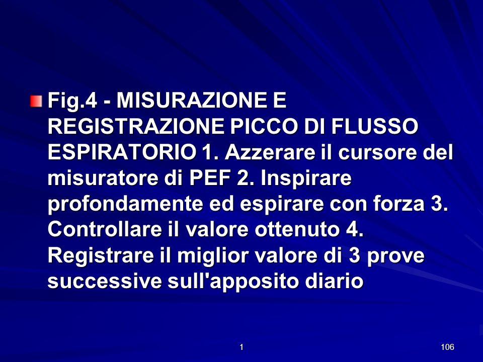 Fig. 4 - MISURAZIONE E REGISTRAZIONE PICCO DI FLUSSO ESPIRATORIO 1