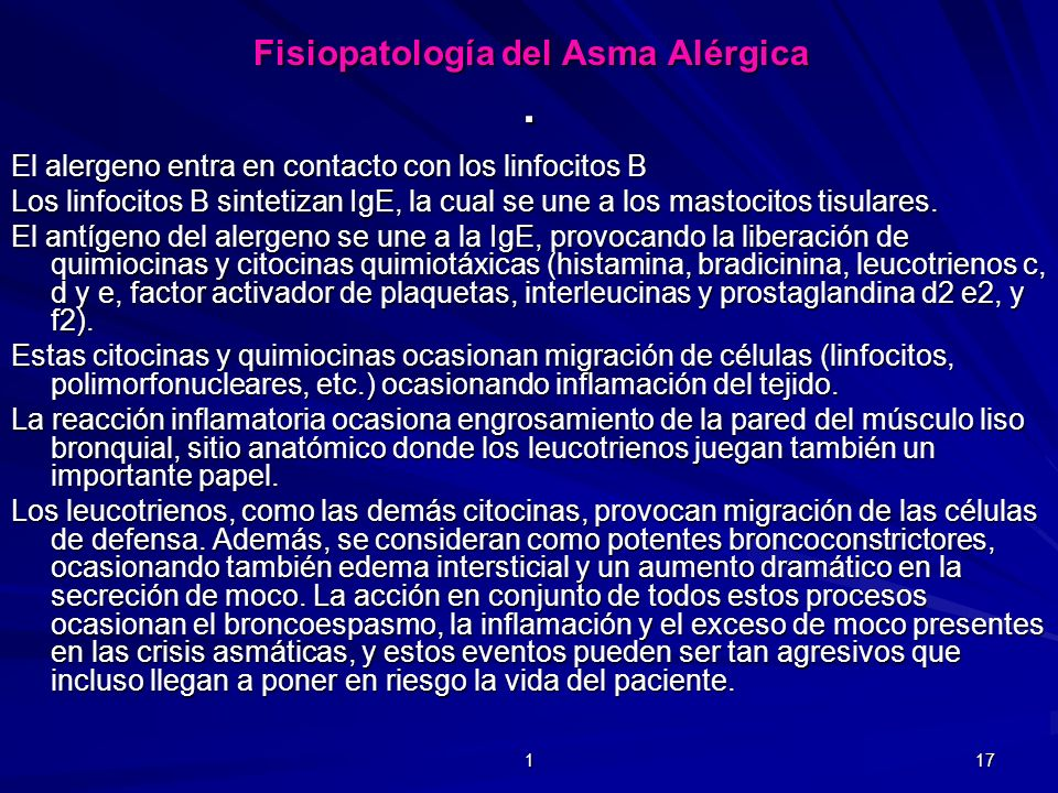 . El alergeno entra en contacto con los linfocitos B