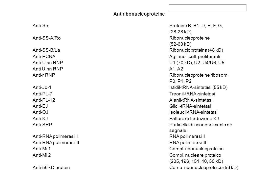 Antiribonucleoproteine
