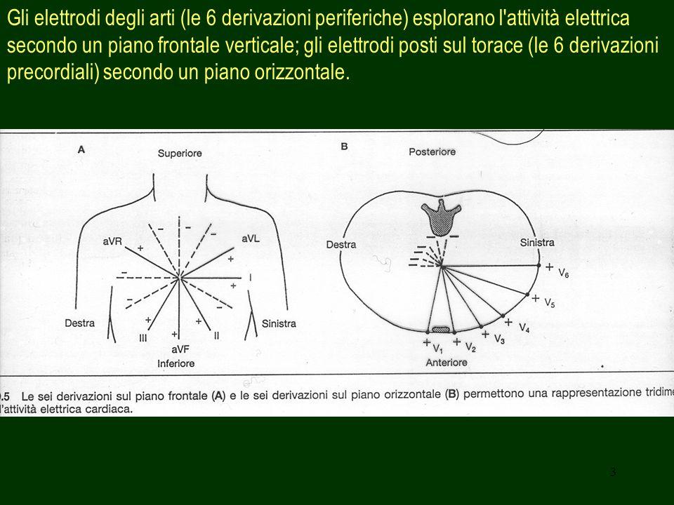 Gli elettrodi degli arti (le 6 derivazioni periferiche) esplorano l attività elettrica secondo un piano frontale verticale; gli elettrodi posti sul torace (le 6 derivazioni precordiali) secondo un piano orizzontale.