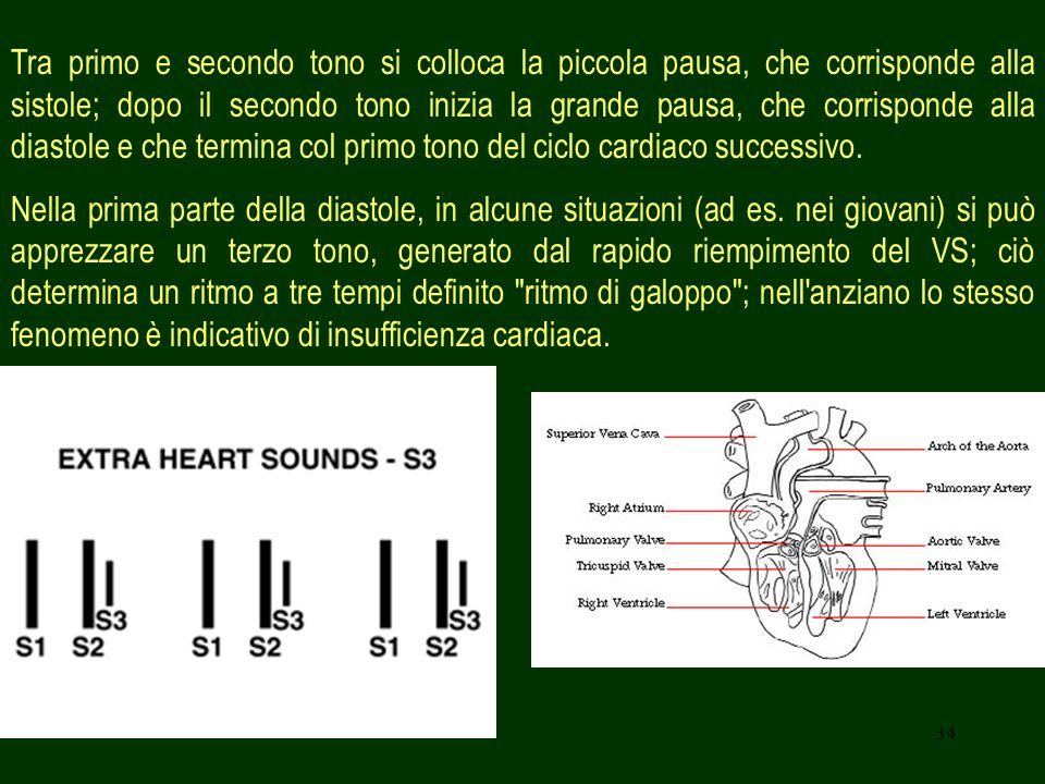 Tra primo e secondo tono si colloca la piccola pausa, che corrisponde alla sistole; dopo il secondo tono inizia la grande pausa, che corrisponde alla diastole e che termina col primo tono del ciclo cardiaco successivo.