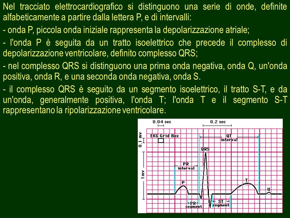 Nel tracciato elettrocardiografico si distinguono una serie di onde, definite alfabeticamente a partire dalla lettera P, e di intervalli: