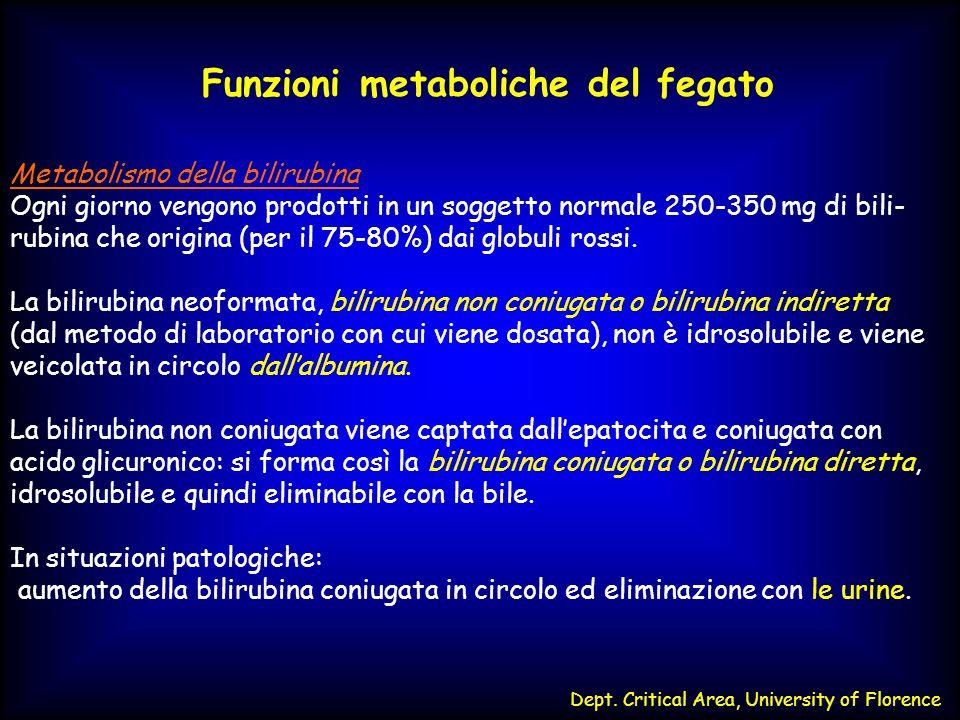 Funzioni metaboliche del fegato